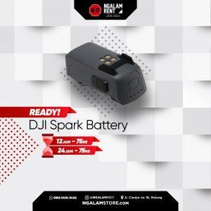 Sewa Baterai DJI Spark Original di Malang • NGALAMSTORE